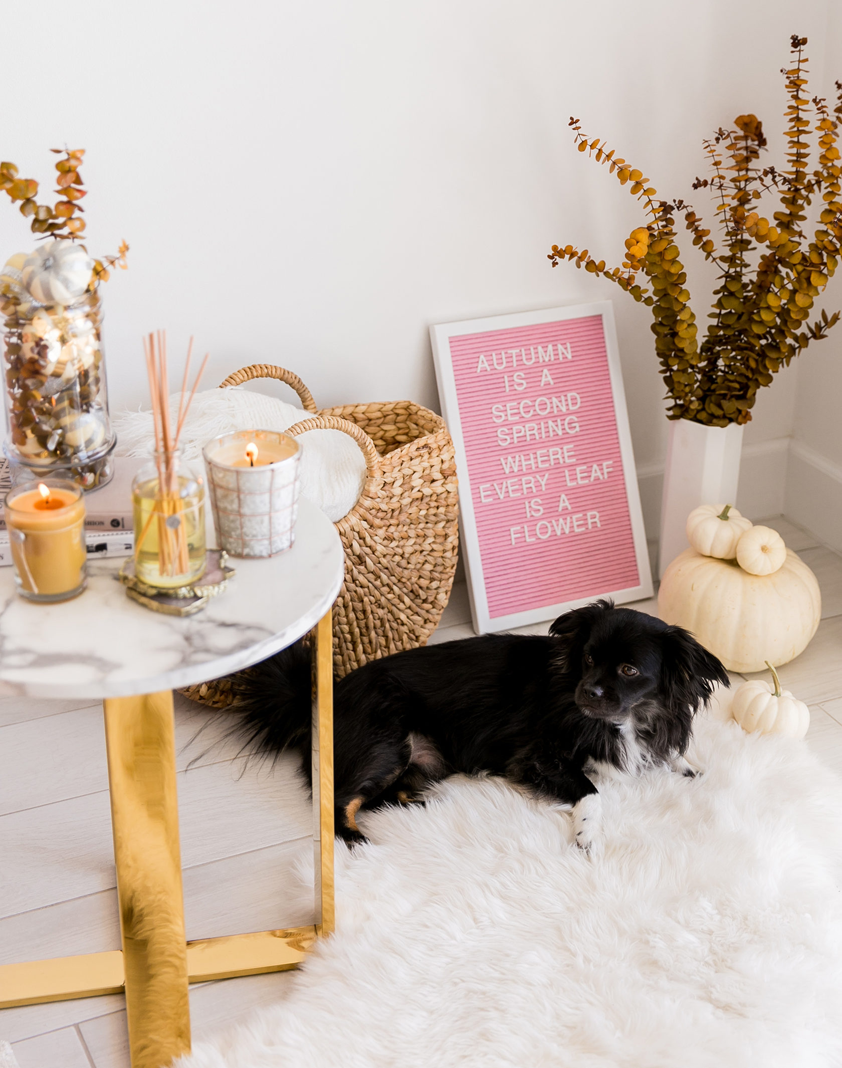 Sydne Style shows chic fall home decor ideas with eucalyptus arrangement